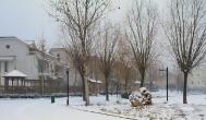 下雪天在家可以做什么赚钱?